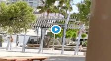 Video | Mallorca: Von der Lust überwältigt » Sex auf offener Straße